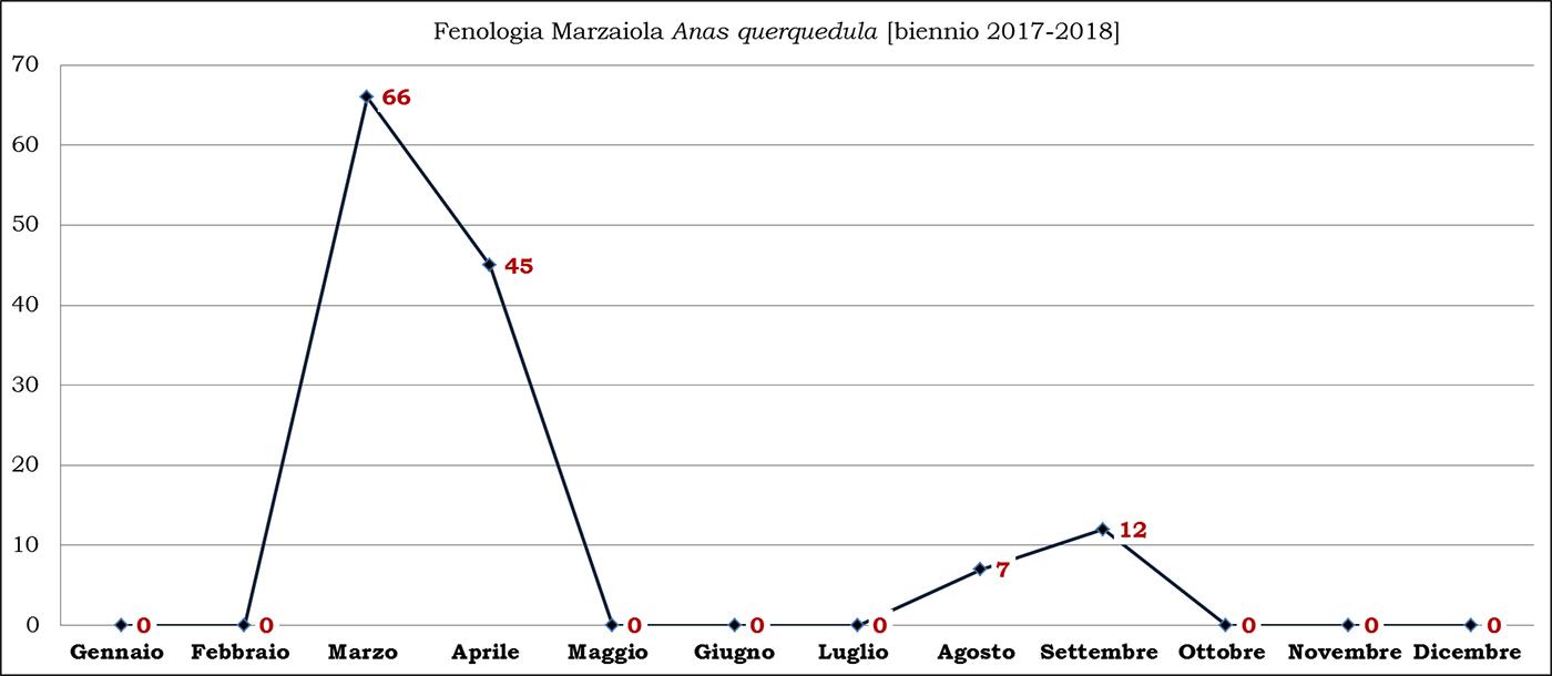 03-marzaiola biennio 2017-2018