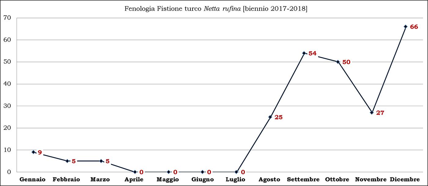 09-turco biennio 2017-2018