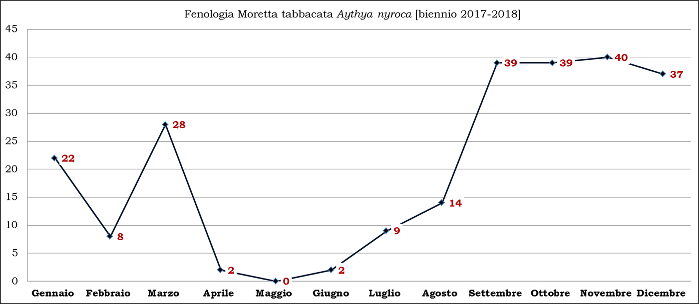 11-tabbacata biennio 2017-2018