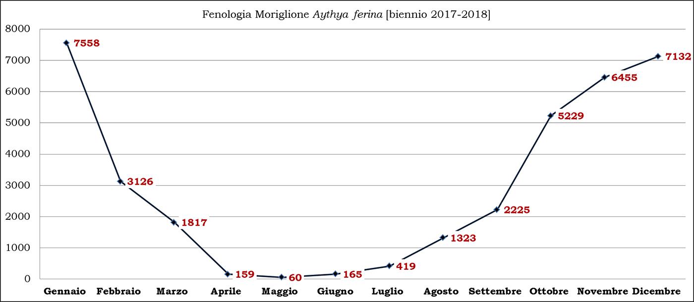 12-moriglione biennio 2017-2018