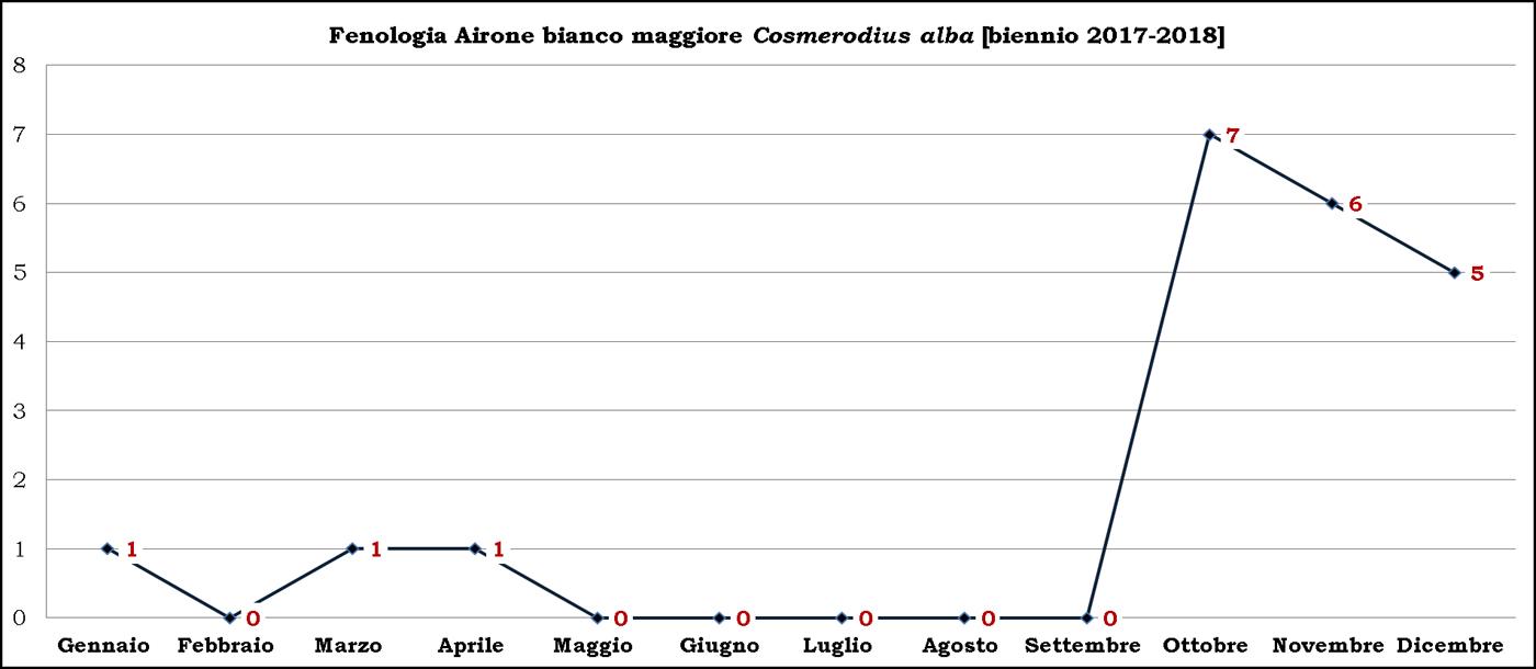 Bianco maggiore 2017-2018