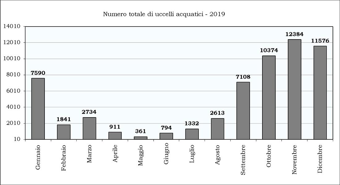 numero uccelli acquatici 2019-123-123-