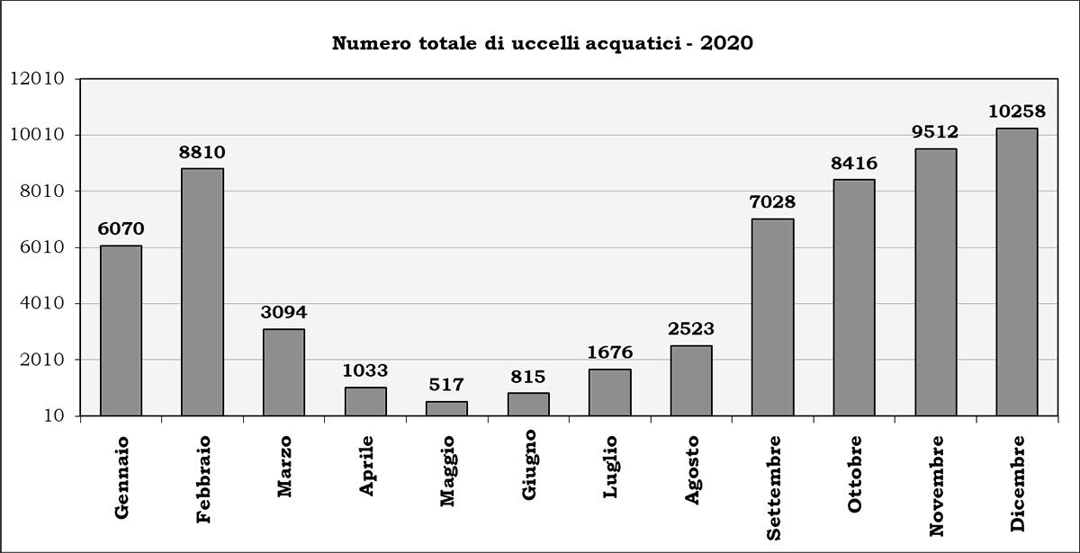 Numero animali Censimento Uccelli Acquatici stagione-2020